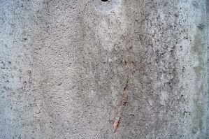 Concrete Texture 30 by bugworlds