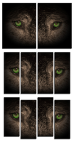 Wolf Eyes 2 Panel and 4 Panel Canvas Sets by Joe-Lynn-Design