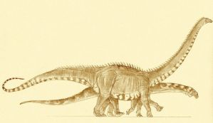 Morrison sauropods by Kahless28