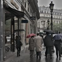 Rainy day in Paris by Krynicki