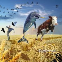Crop Circles Explained by dolphinandcow