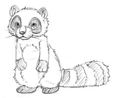Racoon by Yvisama