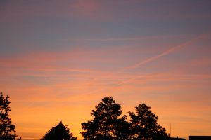 11-06-02 The Sunset 3 by Herdervriend