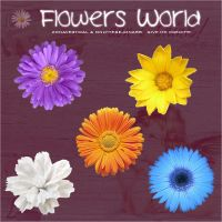Flowers World by zonavertical