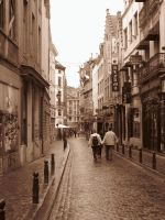 streets of brussels by vinny1300