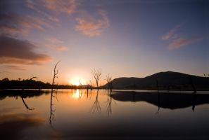 Kilcoy Sunrise by eye-of-tom