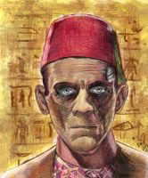 The Mummy - Boris Karloff - Universal Monsters #3 by smjblessing