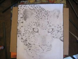 pencil Leopard by JoJoTeddy4