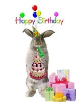 Birthday Bunny Wishes by TRANS4MATICA
