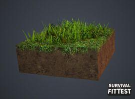 gras texture test by sofgame