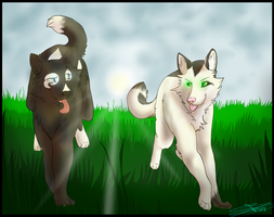 kohana-silvermist::Commission:: A Game of tag. by Wolfen107