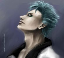 Bleach - Grimmjow by laufeyja