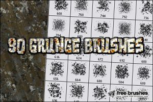 Thirty Grunge Brushes by free-brushes