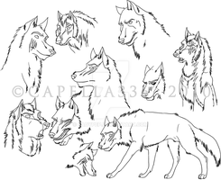 The Untamed Wolf Characters by Capella336