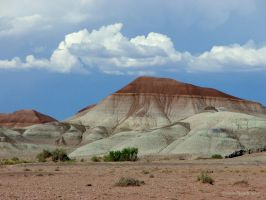 Painted Desert by afugatt