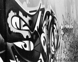 DeviantArt: More Like Graffiti Black and White by DaddyDemonDesigns