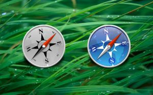 Safari icon - thin bezel by applesandjam