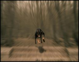 insane speed by SHUME-1