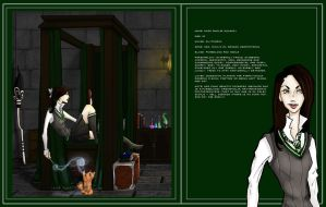 Slytherin Dorm Space 13 by Hogwarts-Castle