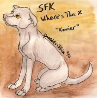 SFK Where's The X by WildGriffin