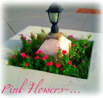 Pink Flowers~... by EuroPrincess