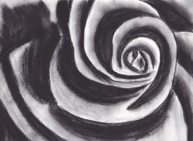Charcoal Rose by Bex013