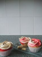 Raspberry and White Chocolate Swirl Cupcakes by alexisfyre