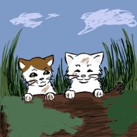 When they were young with four paws by Canine-Cadet