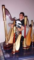 The Punisher among the Gold Harps by OwossoHarpist