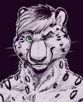COMMISSION: Wink Wonk by Rehgan