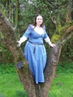 Gown for medieval markets by AFahrbach