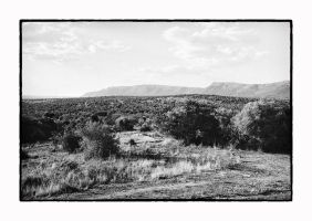 South Africa 5 by thelizardking25