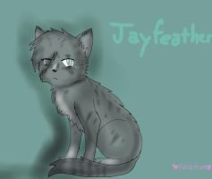 Jayfeather by xPetalstormx