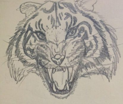 Tiger Growl by malefic3nt