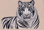 .running out of titles for tiger drawings. by CheshireSmile