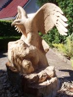 Eagle in progress7 by woodcarve
