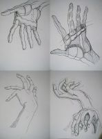 Hand Sketches by jetfree730