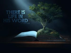 The Bible brings life by kevron2001