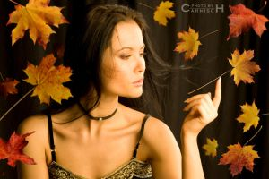 Stop motion in Fall by Carnisch