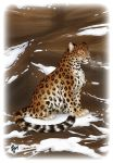 Amur Leopard by orange04