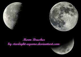 Moon Brushes by starlight-ayame