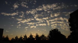 12-11-09 The Sky by Herdervriend