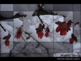 Winter Touch by Duratec