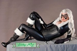 Black Cat - Lounging by LuckyMintPhoto