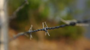 Barbed Wire Close Up by manuelo-pro