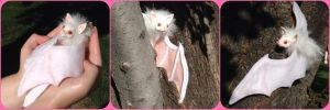 Little White Bat - FOR SALE! by ThePinkPoudo
