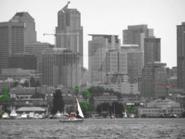 Downtown seattle bw_r_g by manleyaudio