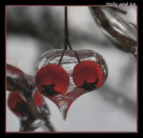 Holly and Ice by boron