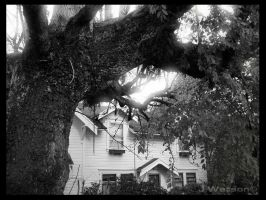 Hidden House revisited by Choucism