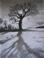 Charcoal Tree and Shade by SangrealDeJoy